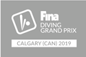 Picture of Fina Grand Prix white76905355-cf3f-492d-88c0-d1f6c9ed6692.png